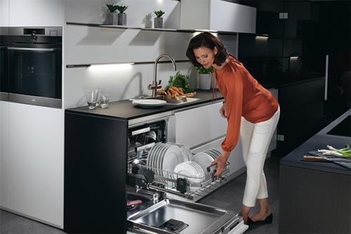 رایج ترین ظرفشویی اسنوا