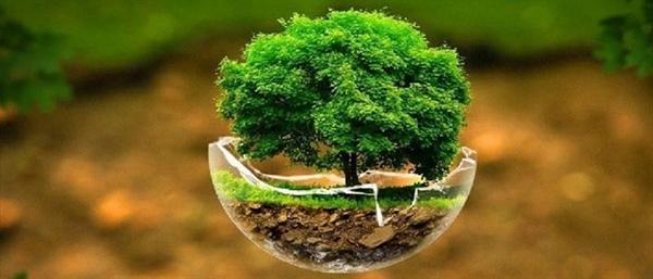 برند امرسان و حفظ محیط زیست